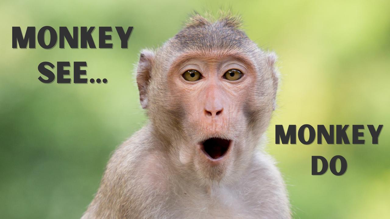64. Monkey See, Monkey Do
